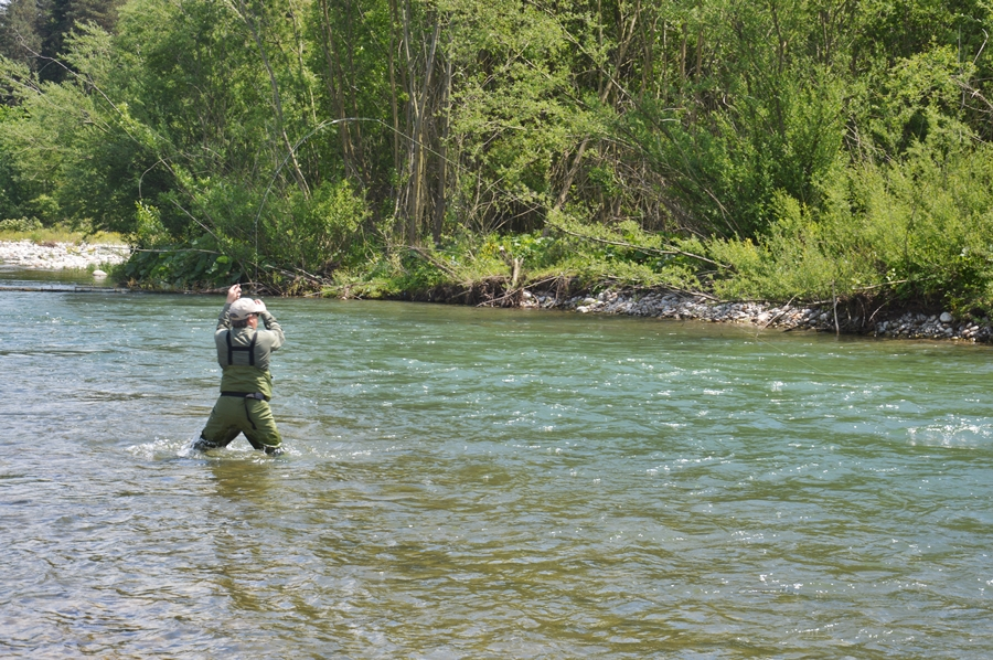 That's me battling a nice brown i fooled on top with a bullet head skwalla on my TFO BVK 3 wt.