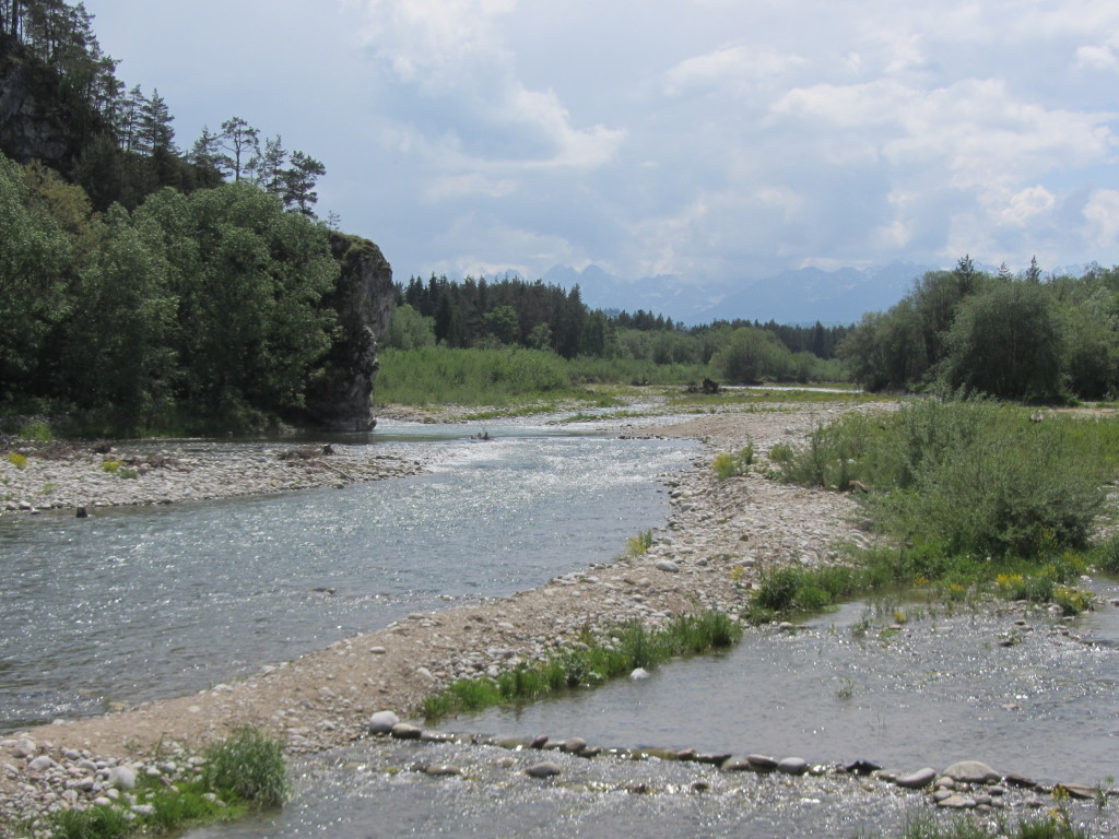 Looking upstream of the protected spawning area of the Bialka