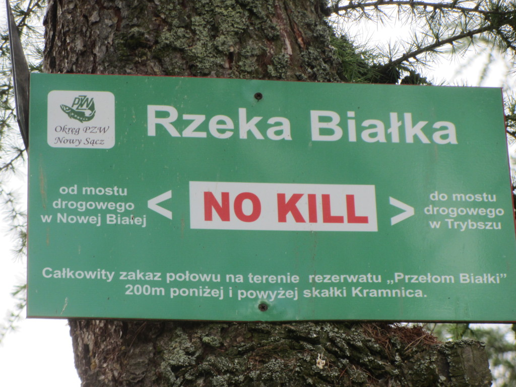 Catch and Release Sign on the Bialka River in Poland