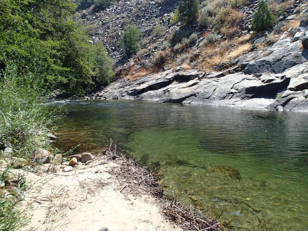 A view of the tailout at the upstream end of the camp site.