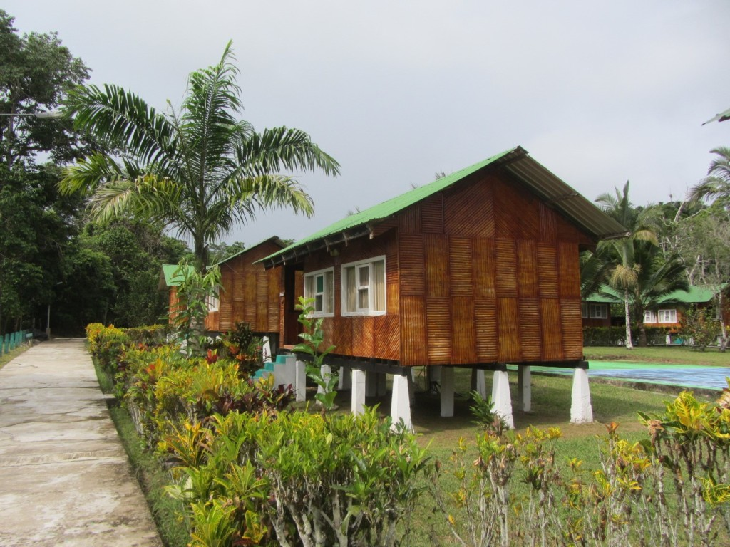 The bungalos at Misahuallí lodge
